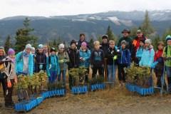 NMS-Scheiblingkirchen-Baumpflanzungen